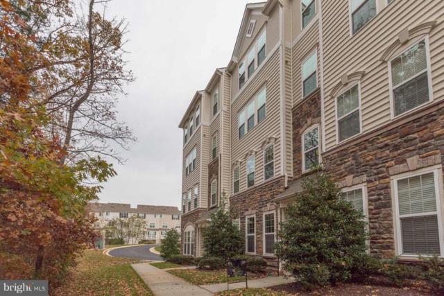 42239 Water Iris Terrace, ALDIE, VA 20105 (#VALO101372) :: Keller Williams Pat Hiban Real Estate Group