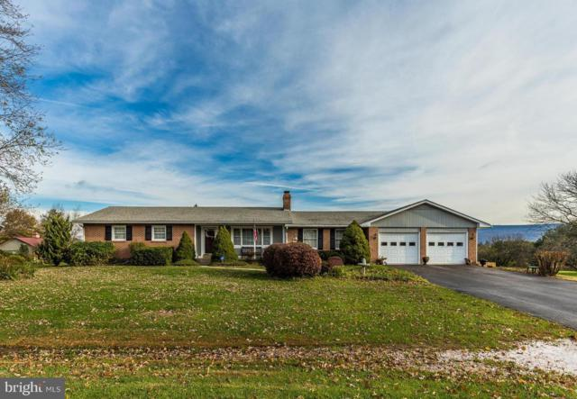 8901 Gloria Avenue, MIDDLETOWN, MD 21769 (#MDFR100814) :: Ultimate Selling Team