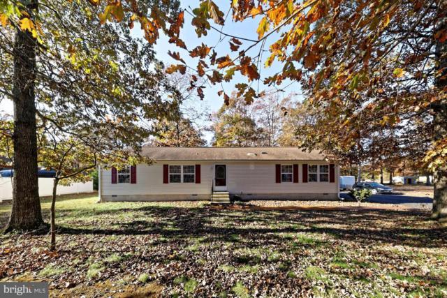 22603 Heritage Lane, LINCOLN, DE 19960 (#DESU107372) :: Colgan Real Estate