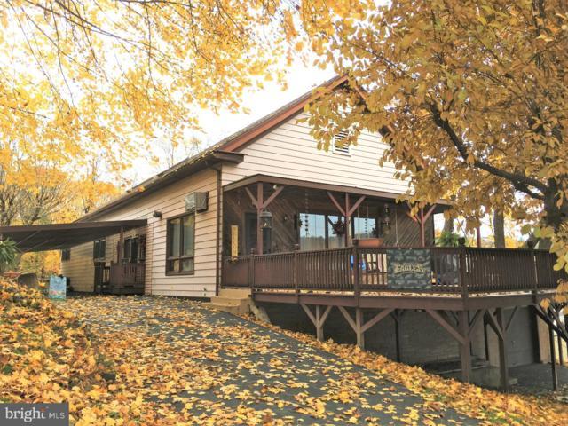 285 Mill Creek Avenue, POTTSVILLE, PA 17901 (#PASK102728) :: Ramus Realty Group