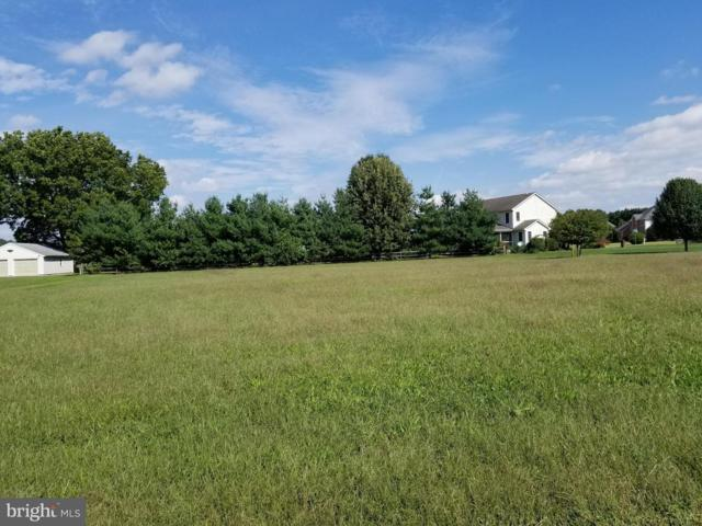 Lot 10 Williston Road, DENTON, MD 21629 (#MDCM100052) :: Barrows and Associates