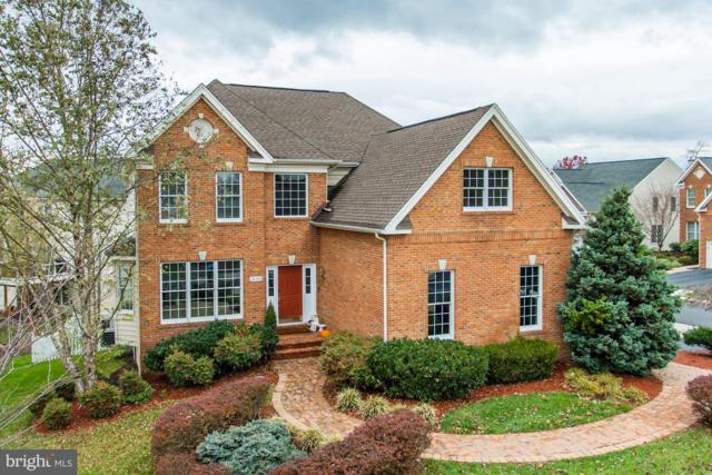 20340 Medalist Drive, ASHBURN, VA 20147 (#VALO101510) :: Stello Homes