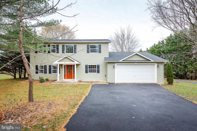 14816 Bushy Park Road, WOODBINE, MD 21797 (#MDHW100798) :: Charis Realty Group