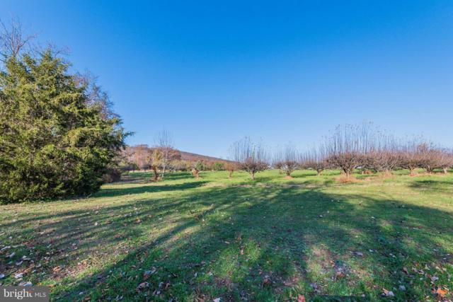 Lot 2 1150 S MOUNTAIN RD, DILLSBURG, PA 17019 (#PAYK101338) :: Teampete Realty Services, Inc