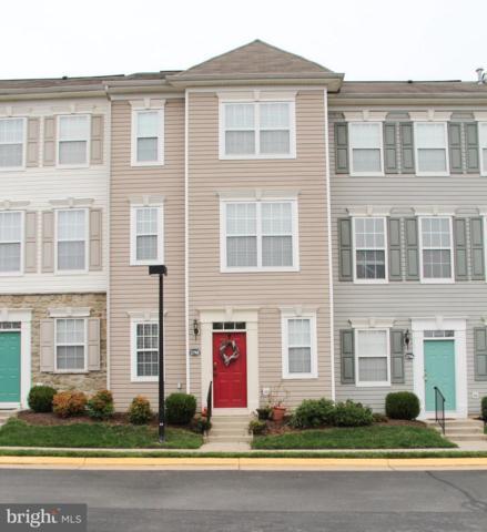 21768 Dragons Green Square, ASHBURN, VA 20147 (#VALO101554) :: Colgan Real Estate