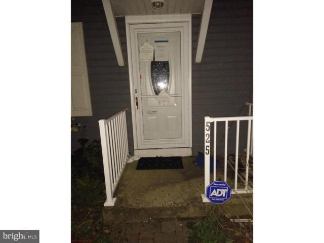525 Manor Place, BIRDSBORO, PA 19508 (#PABK102536) :: Ramus Realty Group