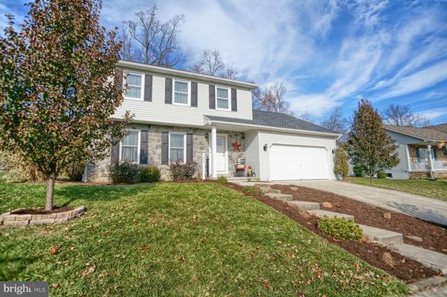 132 Mountain View Drive, ENOLA, PA 17025 (#PACB100796) :: The Joy Daniels Real Estate Group