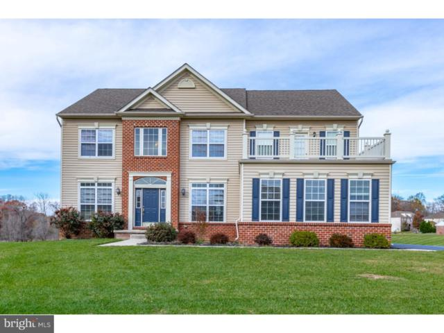 10 Wood Stork Court, MIDDLETOWN, DE 19709 (#DENC101658) :: REMAX Horizons