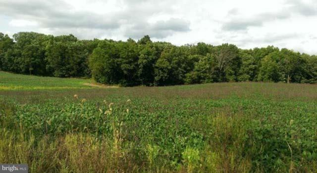 Lot B Low Dutch Road, GETTYSBURG, PA 17325 (#PAAD100244) :: Keller Williams of Central PA East