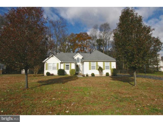 105 Applecross Lane, MAGNOLIA, DE 19962 (#DEKT105512) :: REMAX Horizons
