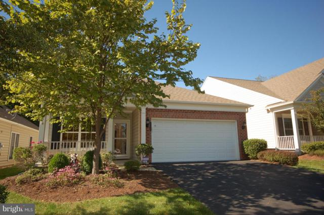 20423 Old Grey Place, ASHBURN, VA 20147 (#VALO101656) :: ExecuHome Realty