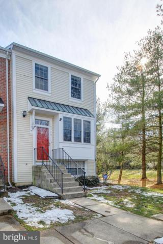 18228 Paladin Drive, OLNEY, MD 20832 (#MDMC103346) :: The Withrow Group at Long & Foster