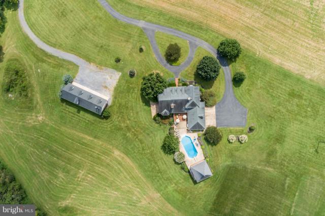 141 Middle Brook Lane, QUICKSBURG, VA 22847 (#VASH100358) :: Bob Lucido Team of Keller Williams Integrity