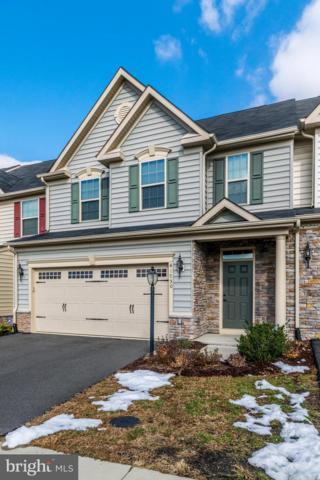 41750 Mcdivitt Terrace, ALDIE, VA 20105 (#VALO107080) :: TVRG Homes
