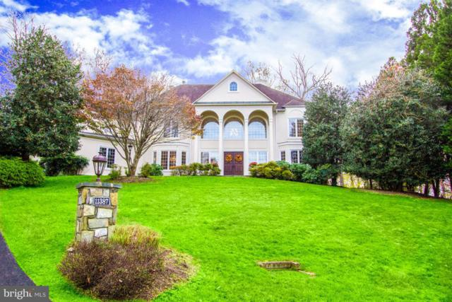 11387 Highbrook Court, STERLING, VA 20165 (#VALO118032) :: Pearson Smith Realty