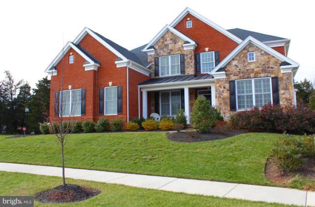 41433 Autumn Sun Drive, ALDIE, VA 20105 (#VALO124504) :: Colgan Real Estate