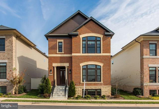 20422 Roslindale Drive, ASHBURN, VA 20147 (#VALO124774) :: Cristina Dougherty & Associates