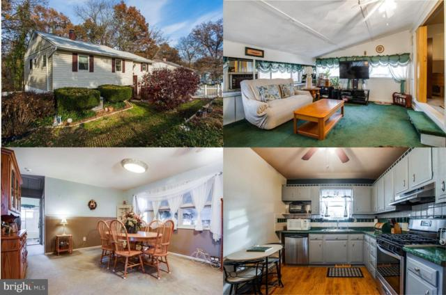 1319 Chapelview Drive, ODENTON, MD 21113 (#MDAA135368) :: Remax Preferred | Scott Kompa Group