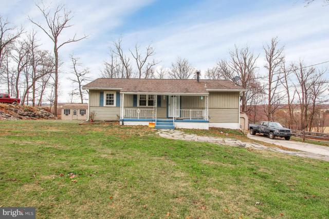 10161 Park View Drive, FELTON, PA 17322 (#PAYK102306) :: The Heather Neidlinger Team With Berkshire Hathaway HomeServices Homesale Realty