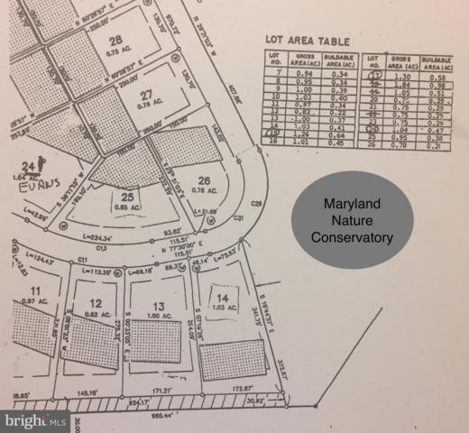 Lot 14 Village Trail, SNOW HILL, MD 21863 (#MDWO101072) :: ExecuHome Realty
