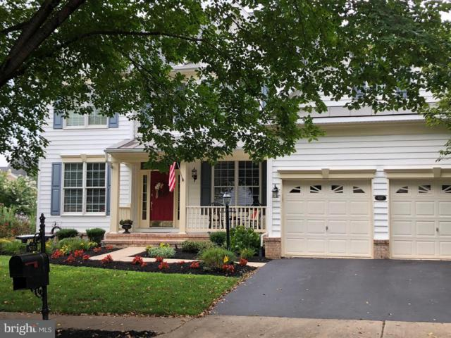 5227 Blossom Hill Drive, HAYMARKET, VA 20169 (#VAPW158520) :: Bob Lucido Team of Keller Williams Integrity