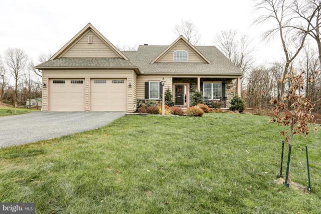 105 Monument Drive, ELIZABETHTOWN, PA 17022 (#PALA108660) :: John Smith Real Estate Group