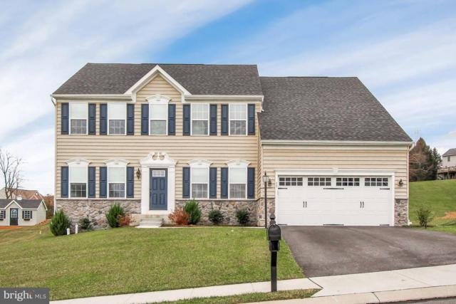 17 Bee Tree Circle, NEW FREEDOM, PA 17349 (#PAYK102652) :: The Heather Neidlinger Team With Berkshire Hathaway HomeServices Homesale Realty