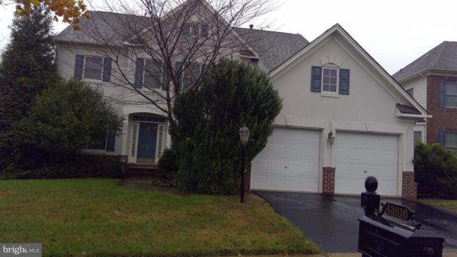 43616 Habitat Circle, LEESBURG, VA 20176 (#VALO167204) :: Remax Preferred | Scott Kompa Group