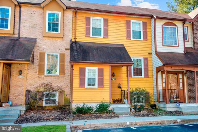 7391 Swan Point Way 9-4, COLUMBIA, MD 21045 (#MDHW138810) :: Bob Lucido Team of Keller Williams Integrity