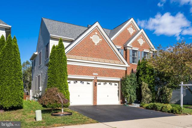 25929 Quinlan Street, CHANTILLY, VA 20152 (#VALO171054) :: Colgan Real Estate
