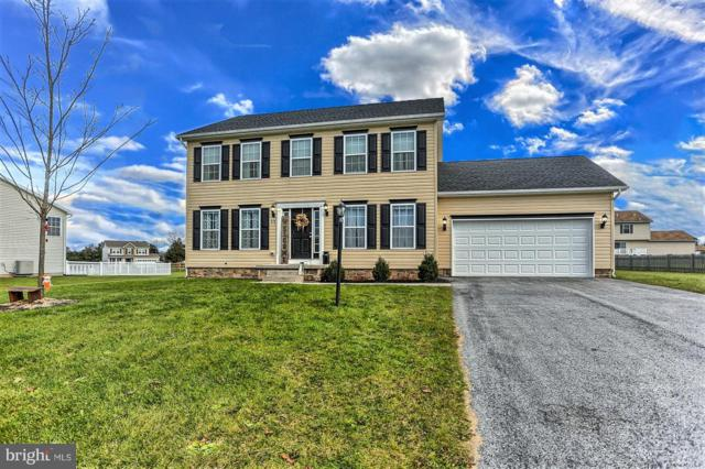 175 W Crest View Lane, GETTYSBURG, PA 17325 (#PAAD101514) :: The Heather Neidlinger Team With Berkshire Hathaway HomeServices Homesale Realty