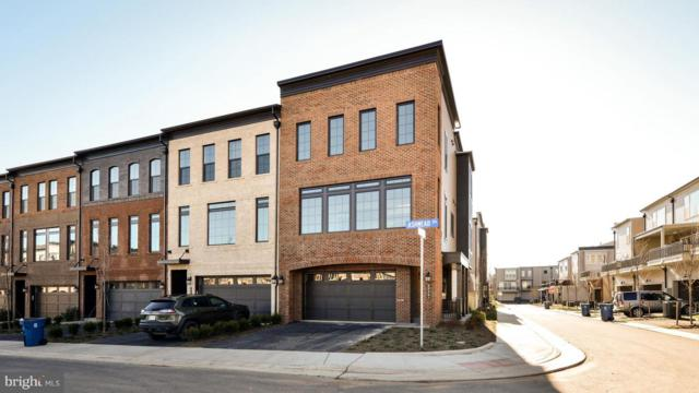 42281 Ashmead Terrace, BRAMBLETON, VA 20148 (#VALO174244) :: The Greg Wells Team