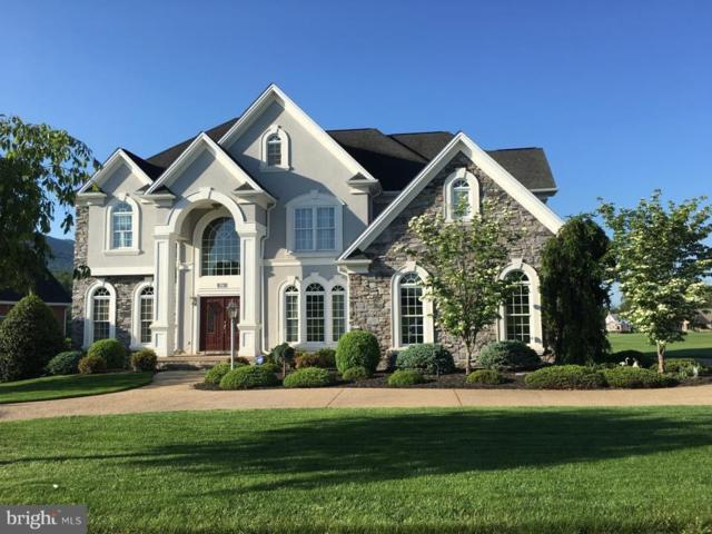 254 Tee Court, NEW MARKET, VA 22844 (#VASH104696) :: Great Falls Great Homes