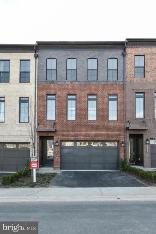 42291 Ashmead Terrace, BRAMBLETON, VA 20148 (#VALO174256) :: LoCoMusings