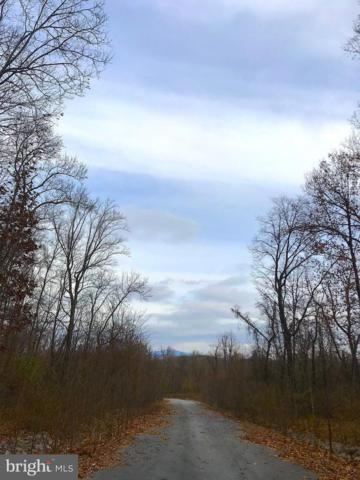 17 Rugged Trail, HEDGESVILLE, WV 25427 (#WVBE116160) :: Pearson Smith Realty