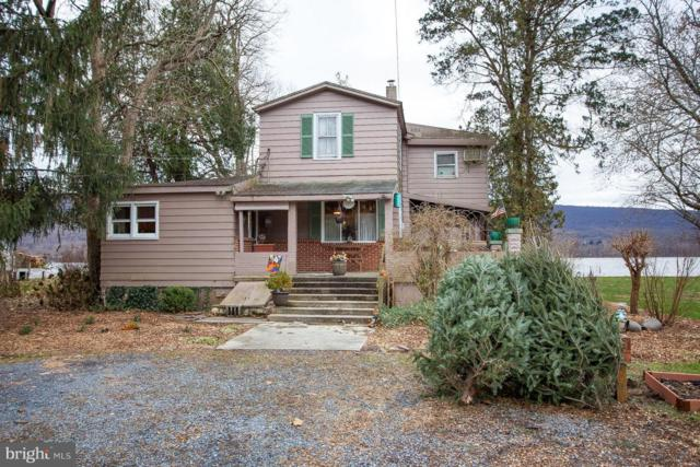 1670 Towpath Road, DAUPHIN, PA 17018 (#PADA103364) :: Benchmark Real Estate Team of KW Keystone Realty