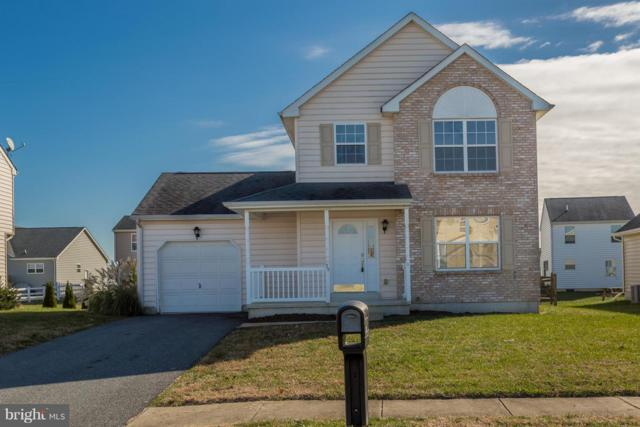 79 Liborio Lane, SMYRNA, DE 19977 (#DEKT134392) :: The Rhonda Frick Team