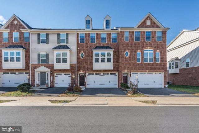 25795 Double Bridle Terrace, ALDIE, VA 20105 (#VALO179786) :: Bob Lucido Team of Keller Williams Integrity