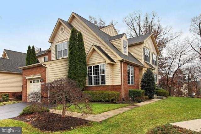 43577 Dunhill Cup Square, ASHBURN, VA 20147 (#VALO179806) :: RE/MAX Executives