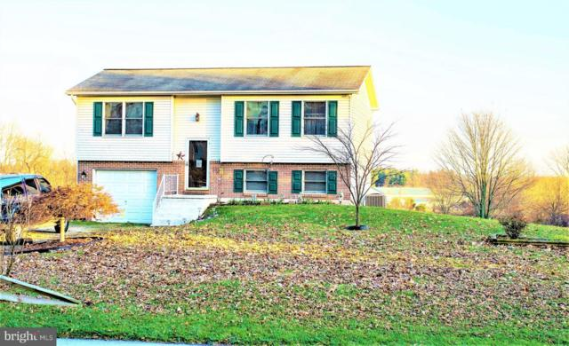 1434 Frederick Pike, LITTLESTOWN, PA 17340 (#PAAD101732) :: The Heather Neidlinger Team With Berkshire Hathaway HomeServices Homesale Realty