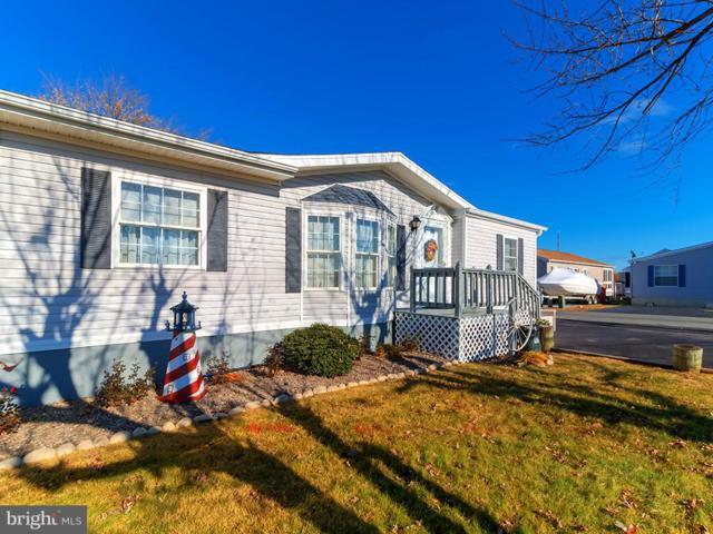 36925 Blue Bill Drive, SELBYVILLE, DE 19975 (#DESU122670) :: Compass Resort Real Estate