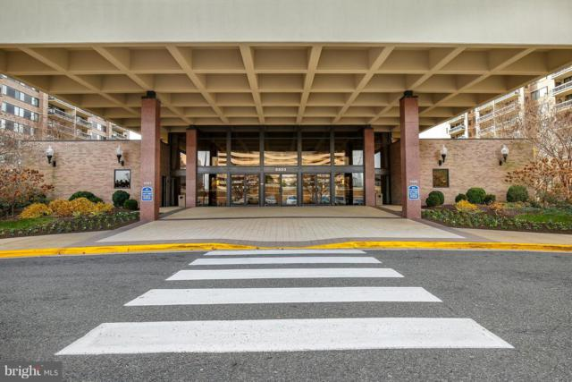 5505 Seminary Road 312N, FALLS CHURCH, VA 22041 (#VAFX489302) :: The Belt Team