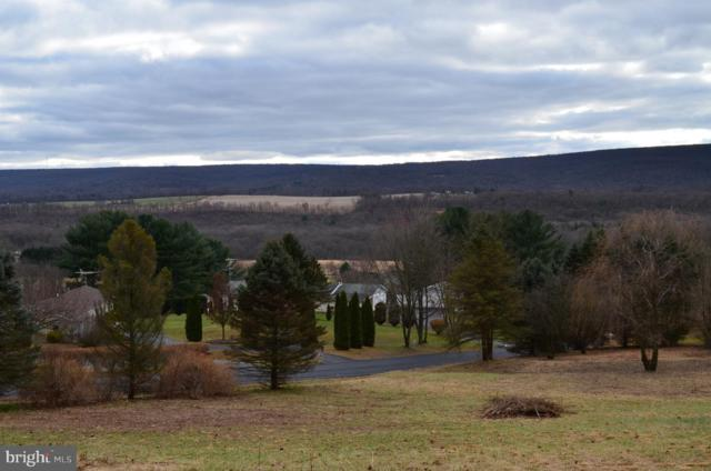 63 Sunny Side Drive, SCHUYLKILL HAVEN, PA 17972 (#PASK114492) :: Ramus Realty Group