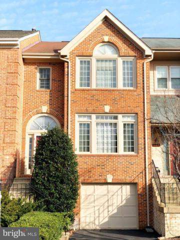 6403 Little Potters Lane, ALEXANDRIA, VA 22310 (#VAFX502574) :: Tom & Cindy and Associates