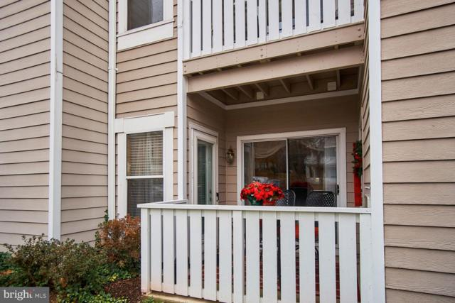 14317 Climbing Rose Way #101, CENTREVILLE, VA 20121 (#VAFX505898) :: The Sebeck Team of RE/MAX Preferred