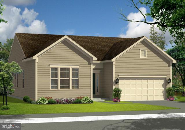 Megan Lane- Juniper, STEPHENSON, VA 22656 (#VAFV121146) :: Colgan Real Estate