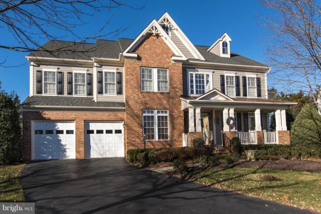 21813 Ainsley Court, BROADLANDS, VA 20148 (#VALO226090) :: Great Falls Great Homes
