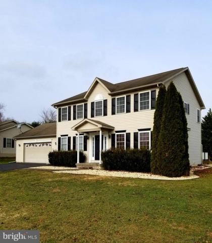 256 Amherst Ln, FALLING WATERS, WV 25419 (#WVBE127302) :: Bob Lucido Team of Keller Williams Integrity