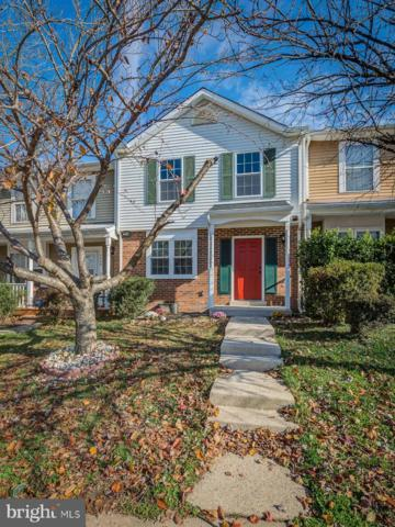 5406 Quest Court, WOODBRIDGE, VA 22193 (#VAPW266752) :: The Team Sordelet Realty Group