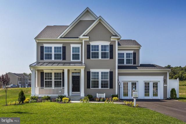 Megan Lane- Newbury, STEPHENSON, VA 22656 (#VAFV121748) :: Colgan Real Estate